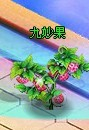 clip_image009.jpg